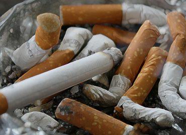 NUOVA ZELANDA: continua la ricerca sull'impiego della Cistisina per smettere di fumare.